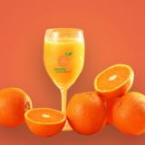 Orchard Juice LTD Tangerine Juice